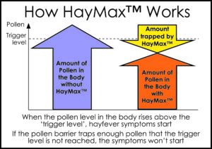 how-haymax-works-diagram-300x212