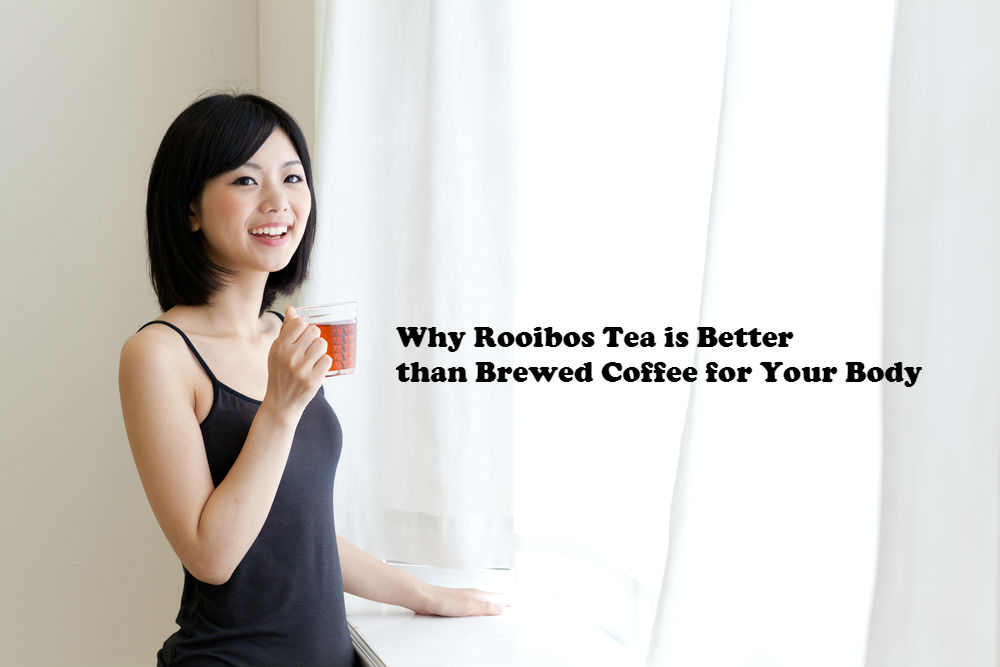 Why Rooibos Tea is Better than Brewed Coffee for Your Body image by Love Thy Self