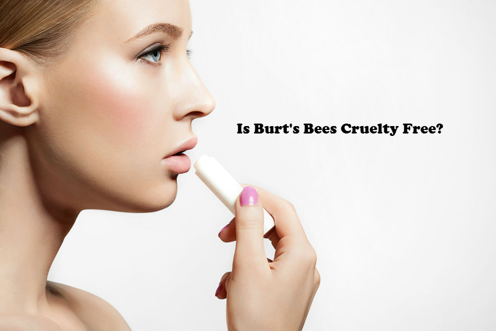 Is Burt's Bees Cruelty Free image by Love Thyself Australia