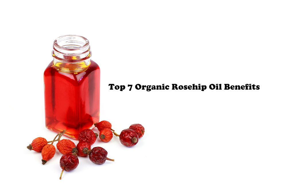 Top 7 Organic Rosehip Oil Benefits image by Love Thyself Australia