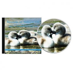 Sounds Of Nature CD (1)