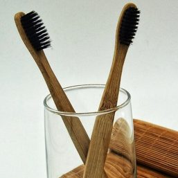 Image of Vegan Organics – Bamboo Charcoal Toothbrush by Love Thyself Australia