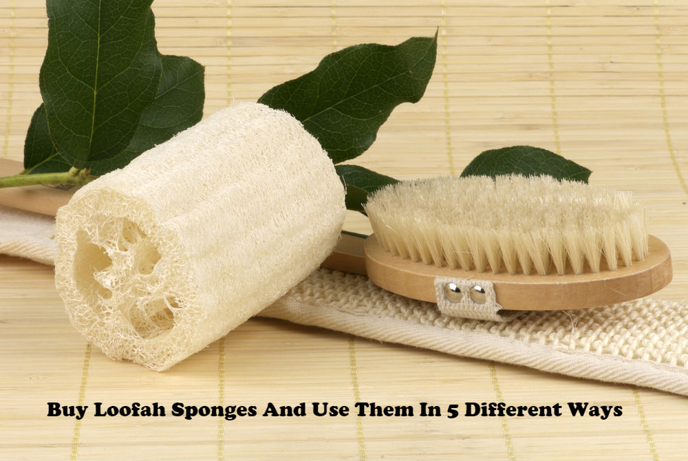 Buy Loofah Sponges And Use Them In 5 Different Ways article image by Love Thyself