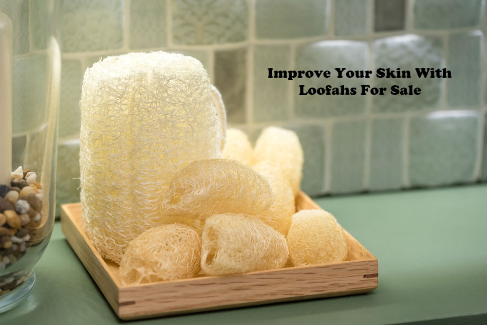 Improve Your Skin With Loofahs For Sale article image by Love Thyself