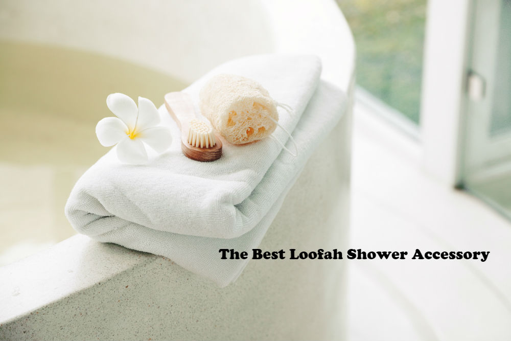 The Best Loofah Shower Accessory article image by Love Thyself