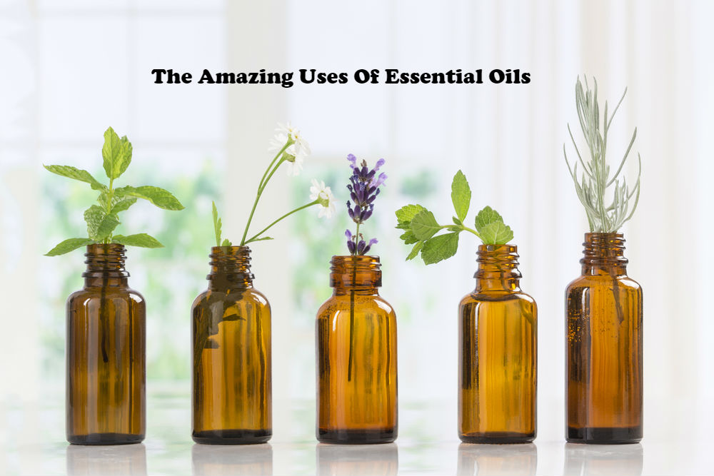 The Amazing Uses of Essential Oils article image by Love Thyself