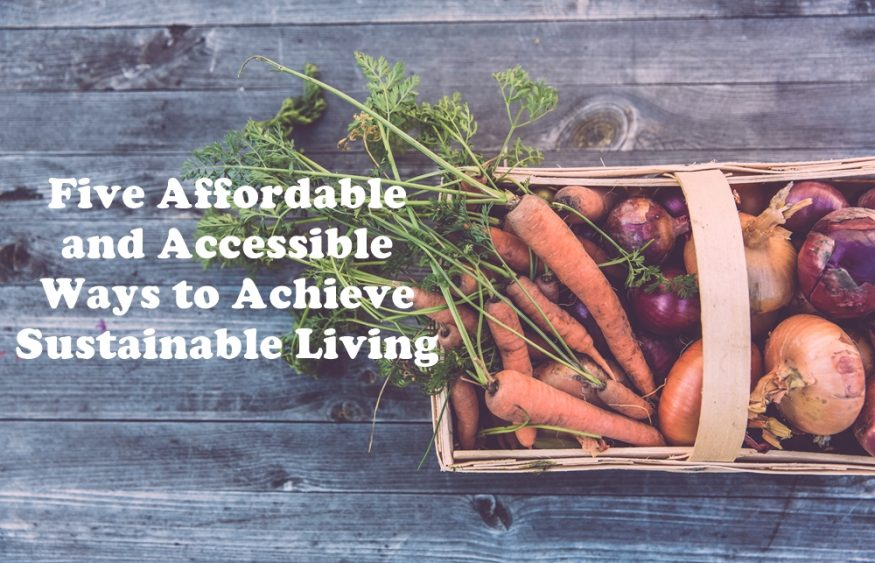 Five Affordable and Accessible Ways to Achieve Sustainable Living