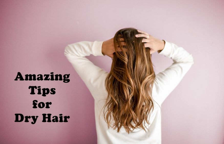 Amazing Tips for Dry Hair
