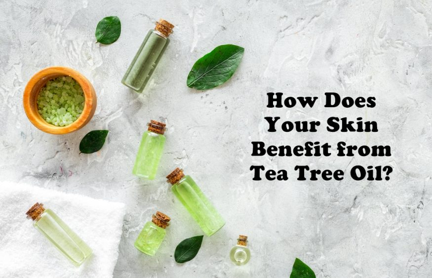 How Does Your Skin Benefit from Tea Tree Oil?